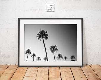 Palm tree, Palm tree print, instant download, Barcelona, minimal photo, Minimal photography, Original artwork, Wall art, tree, nature