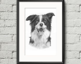 CUSTOM pet portrait from photo in graphite pencils / Birthday, Anniversary, Christmas gift idea / pet memorial, cat, dog