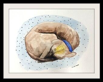 Dog ball, original watercolor painting, 9x12'', mexican hairless dog, xolo dog, mexican xololt, xoloitzcuintle, dog life, sleeping animal
