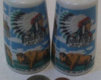 Vintage Salt and Pepper Shakers, Set of Vintage Salt & Pepper Shakers, South Dakota, Black Elk Sioux Indian, Buffalo of the Old West