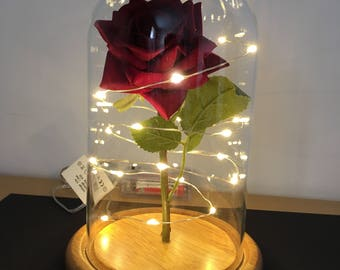 Enchanted rose in a dome with soft white lights, gift, loved one,anniversary, birthday, wedding special occasions, 16th/18th birthday