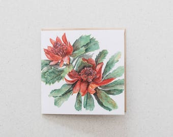 Waratah - blank watercolour greeting card - recycled, 125mm square - with kraft envelope