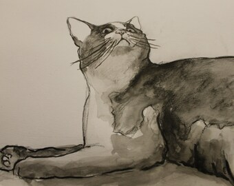 Ink cat drawing, animal art, cat in black and white, water colour art, cat drawing