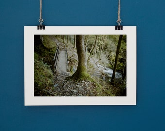 Waterfall Country Path Brecon Beacons Fine Art Photography 35mm Analogue