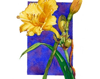 Lilies 8.5 x 11 art watercolor painting giclee print, series of 4,  contemporary Floral group, yellow, greens, blues, by Phyllis Nathans art
