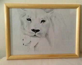 Lioness and her boyfriend