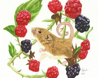 Harvest Mouse Watercolour - Original Handmade Art