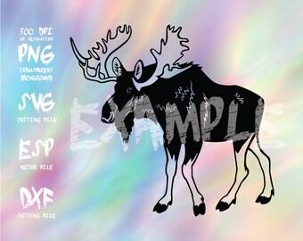 Moose Silhouette,clipart,SVG,PNG 300dpi ,ESP vector