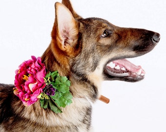 DANIELLE- Wedding Dog Collar, Dog Flower Crown, Flower Dog Collar, Summer Wedding, Tropical Wedding, Boho Wedding,Pink Peonies,Beach wedding