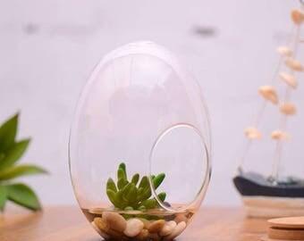 Egg Shape Clear Glass Fairy Garden Flower Planter Vase Landscape Bottle DIY Home Desk Decoration Gift