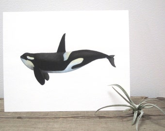 Orca Watercolor Giclée Print