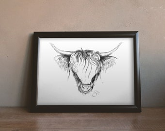 Malcolm/Highland Cow/Original Art/Print/Charcoal/Drawing/Hand Signed