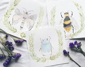 SET OF 3 bug paintings (beetle, moth, bee)