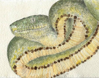 Original Watercolour Painting: Golden Snake, Gold, Jewels, Art