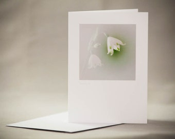 Photographic Greeting card. Photo Greeting card. Flower Greeting card.Blank card. Flora Greeting card. Flower print.Flora print.