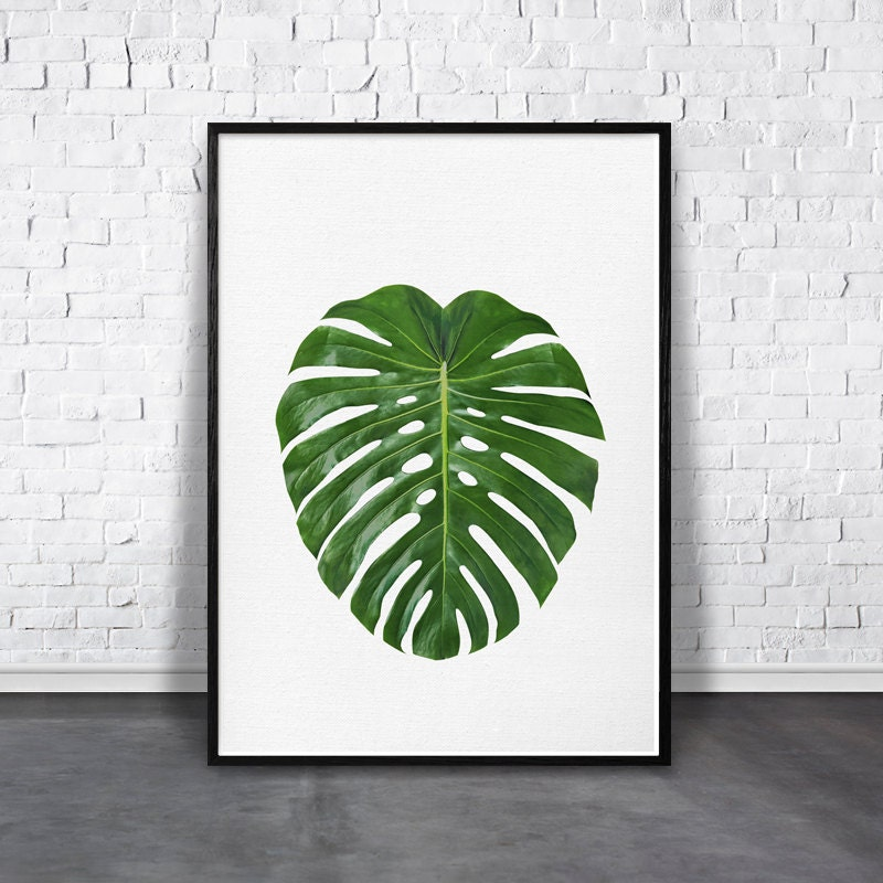 greenery print monstera leaf print jungle leaf green leaves photo tropical decor - Tropical Decor