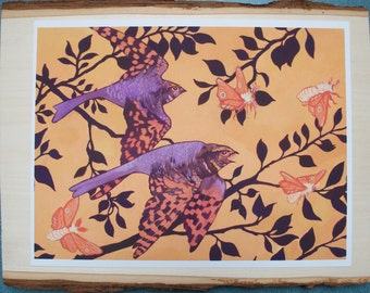 Whippoorwills Print // bird print