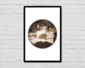 Sepia - Tranquil Print - Nature Art - Geometric Digital Print - Brown - Trees - Branches - Photography - Wall Art - Digital Print - Modern
