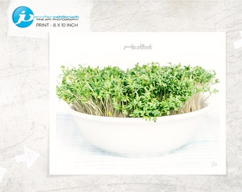 "Food Fine Art Print, Food Photography, Modern Food Photo, Kitchen Decor, Food Wall Art - ""Cress No. 6"""