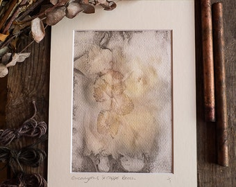 Original Eco Print artwork, ready to frame in A4. Hand made using Copper Beech and Eucalyptus leaves, OOAK