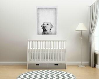 Wall Art, Lab, Dog, Baby Nursery, Nursery Animals, Graphic Designed Art, Photograph, Rustic Wall Decor