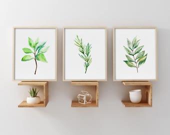 Set of 3 Herbs Prints, Bay Leaves Oregano Rosemary Watercolor Painting, Kitchen Botanical & Herbal Wall Art, Scandinavian Illustrations