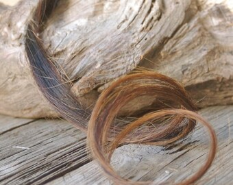 Horse Hair for Crafting, Whiskers, Needle Craft, Felting, Pony, Donkey, Craft Supplies Supply, Lashes,