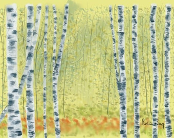 Birch Trees In A Green Forest