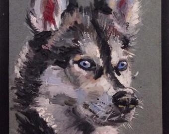 A Husky Dog Original Miniature Oil Painting by Anna Pchelka Print