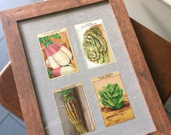 Vintage framed French VEGETABLE SEED PACKET labels picture A
