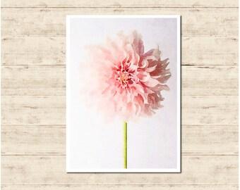 Pink Flower Watercolour Painting Postcard Poster Art Print Q53