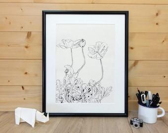 Icelandic poppy, ink drawing, ORIGINAL