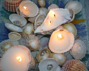 Shell candles, Scented Soy Wax filled seashell,  tea lights,  Breton coast seashells