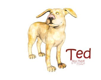 Dog Ted 1, beige, Watercolor Clipart, Baby, Child, Fun, Craft