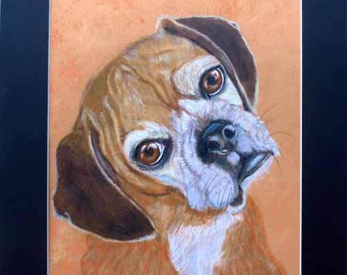 Custom Pet Portrait, Custom Dog and Cat Portrait Artist, Custom Portrait Art