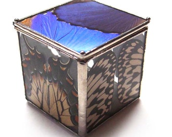 Little Glass Box with Real Butterfly Wings - Special Storage Box - Engagement Ring Box