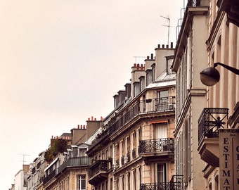 Cardinal - Paris Landscape Photography Print