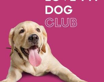 2017 Love My Dog Yarn Club, 3 packages