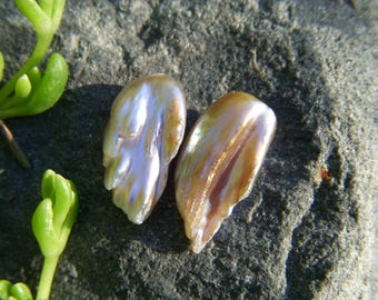 Large Freshwater Feather Pearls - Pair - 11x20mm