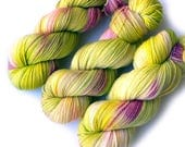 Sock Yarn Handdyed Merino Cashmere Nylon Yarn - Early Rhubarb, 430 yards