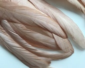 COQUE TAIL FEATHERS Loose / Dark Nude,  Blush, Toasted Almond   / 210