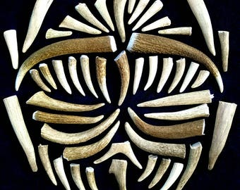 Elk Antler Points. Naturally Shed. Cruelty Free. 3 lbs. Bulk. Tons of Tips!