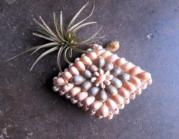 Small Seashell Coin purse coinpurse Vintage wallet bag women's Tiny Natural Shell purse Travel Case