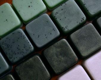 Mini Soap Sampler - the Forest - Gift Set