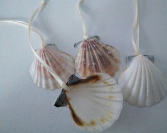 DESTASH - 4 Natural Seashell Ornaments with Ivory Satin Ribbon Hanger
