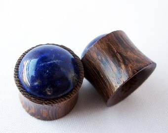 One of a Kind Pair of 15mm Polished Blue Lapis Lazuli and Organic Wood Plugs - Crystal Gauges - Bohemian Stone