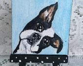 Little Boston Terrier Mini Art