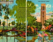 Vintage Florida Postcard - Happiness in Florida (Unused)