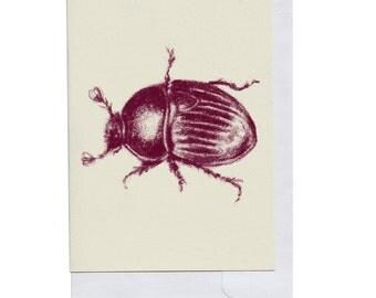 Burgundy Beetle Card