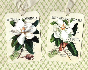 Tags, Magnolia, Floral Tags, Gift Tags, Birthday Tags, Party Favors, Magnolia Tags